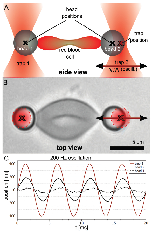 microrheology with optical tweezers principles and applications